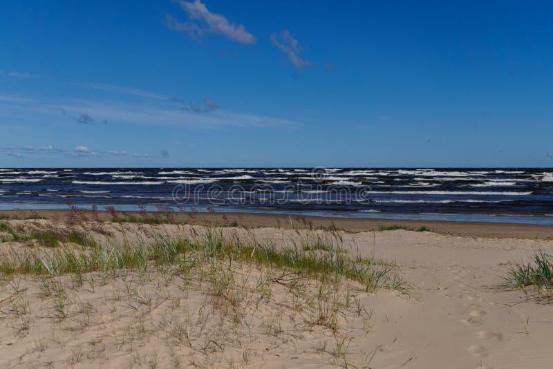 Κύματα μια θυελλώδη θερινή ημέρα, στην ακτή του Κόλπου της Ρήγας στοκ φωτογραφία με δικαίωμα ελεύθερης χρήσης