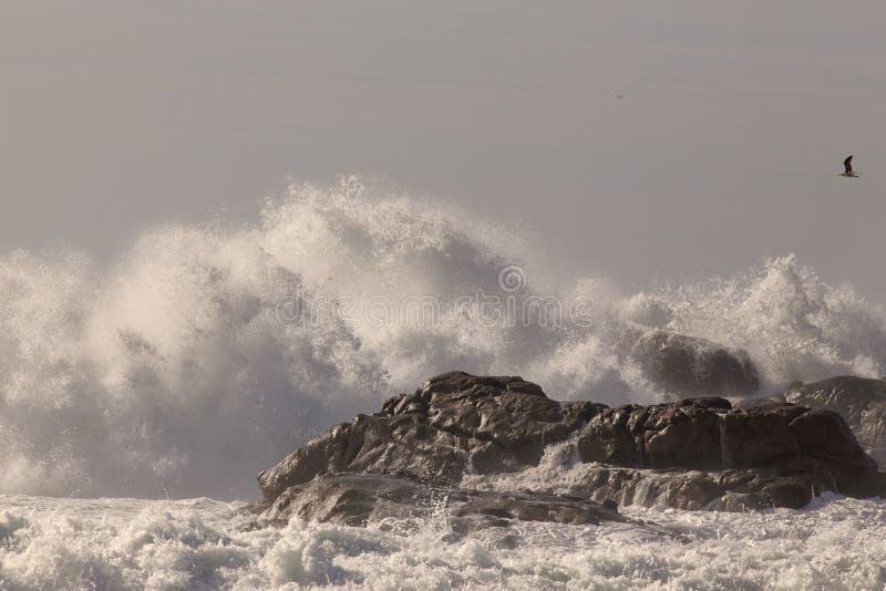 Κύματα που σπάζουν πέρα από τους απότομους βράχους στοκ φωτογραφίες