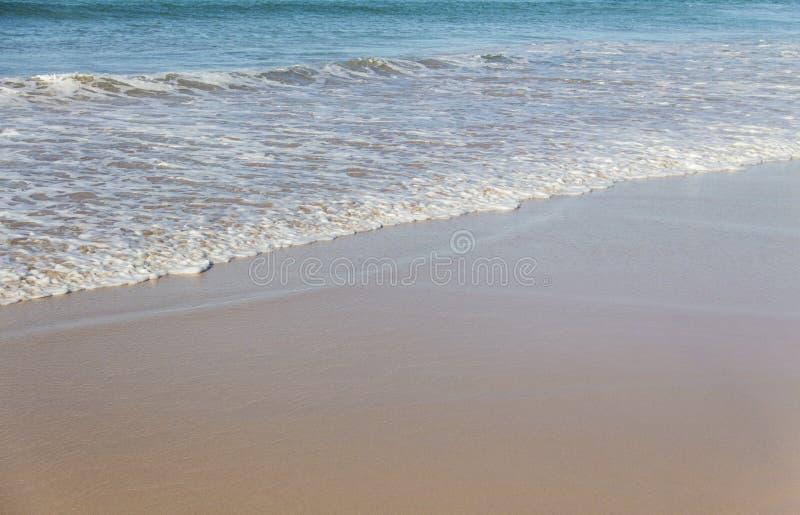 Κύματα στην ανδρική παραλία, Αυστραλία στοκ εικόνα