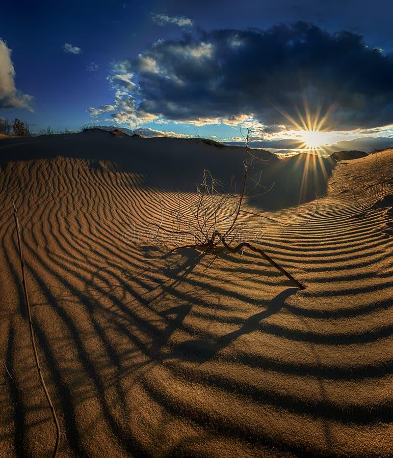 Κύματα της ερήμου άμμου στις ακτίνες του ήλιου ρύθμισης στοκ εικόνα με δικαίωμα ελεύθερης χρήσης