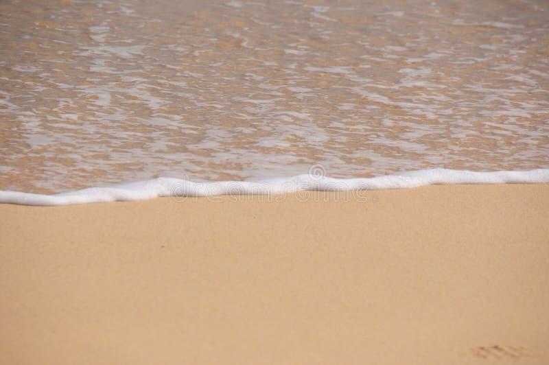 Κύμα και παραλία στοκ εικόνα