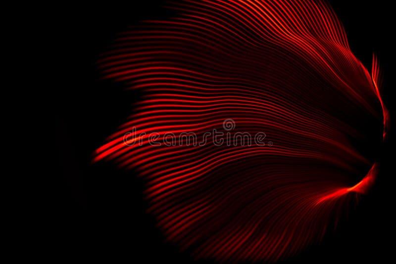 Κύμα κόκκινου φωτός στοκ εικόνες με δικαίωμα ελεύθερης χρήσης