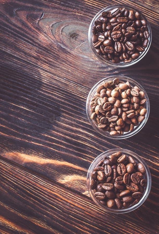 Κύπελλα των διαφορετικών τύπων φασολιών καφέ στοκ φωτογραφίες με δικαίωμα ελεύθερης χρήσης