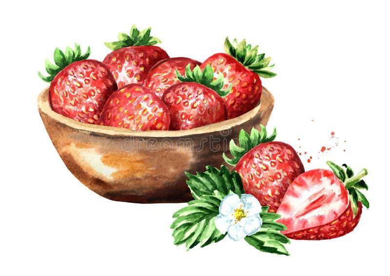 Κύπελλο με τις ώριμες κόκκινες φράουλες Συρμένη χέρι απεικόνιση Watercolor, που απομονώνεται στο άσπρο υπόβαθρο στοκ φωτογραφία