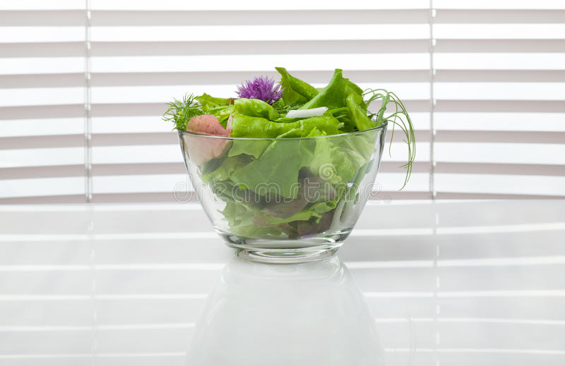 Κύπελλο της πράσινης σαλάτας διατροφής μπροστά από το παράθυρο στοκ φωτογραφία με δικαίωμα ελεύθερης χρήσης