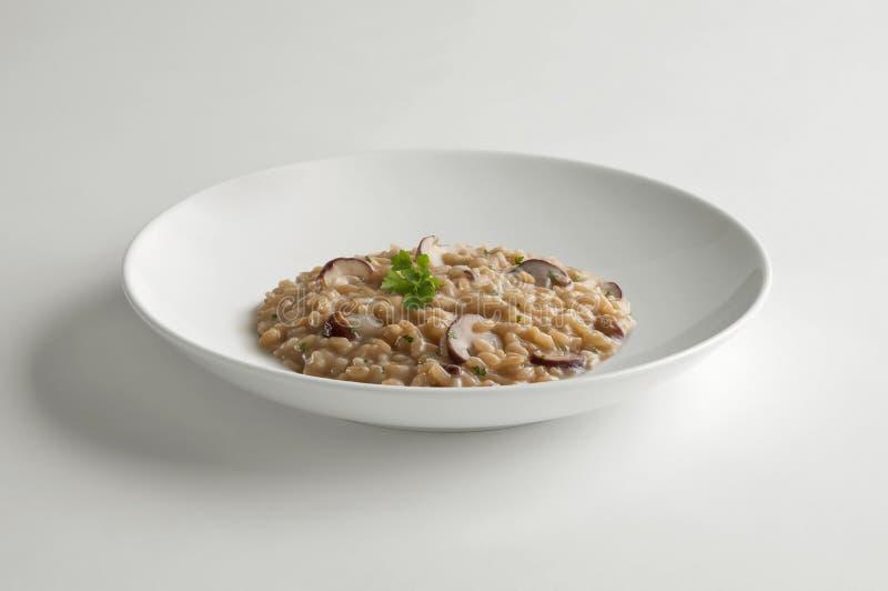 Κύπελλο του risotto με τα μανιτάρια porcini στοκ φωτογραφία με δικαίωμα ελεύθερης χρήσης