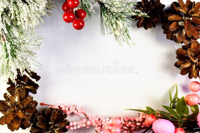 Κώνοι πεύκων και κομψό κλάδος-πλαίσιο για το σχέδιο Οι κώνοι είναι οι καρποί των κωνοφόρων δέντρων στο άσπρο υπόβαθρο, πλαίσιο φω στοκ φωτογραφία με δικαίωμα ελεύθερης χρήσης