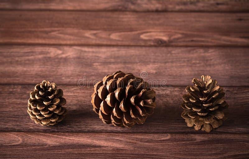 Κώνοι πεύκων σε ξύλινο στοκ εικόνα