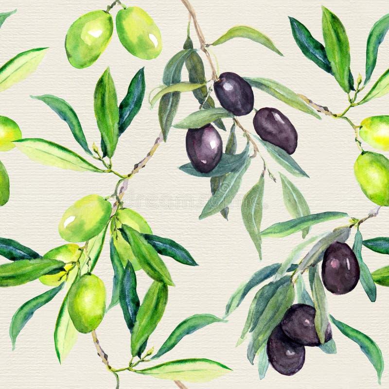 Κλάδοι ελιών της ελιάς πρότυπο άνευ ραφής watercolor ελεύθερη απεικόνιση δικαιώματος