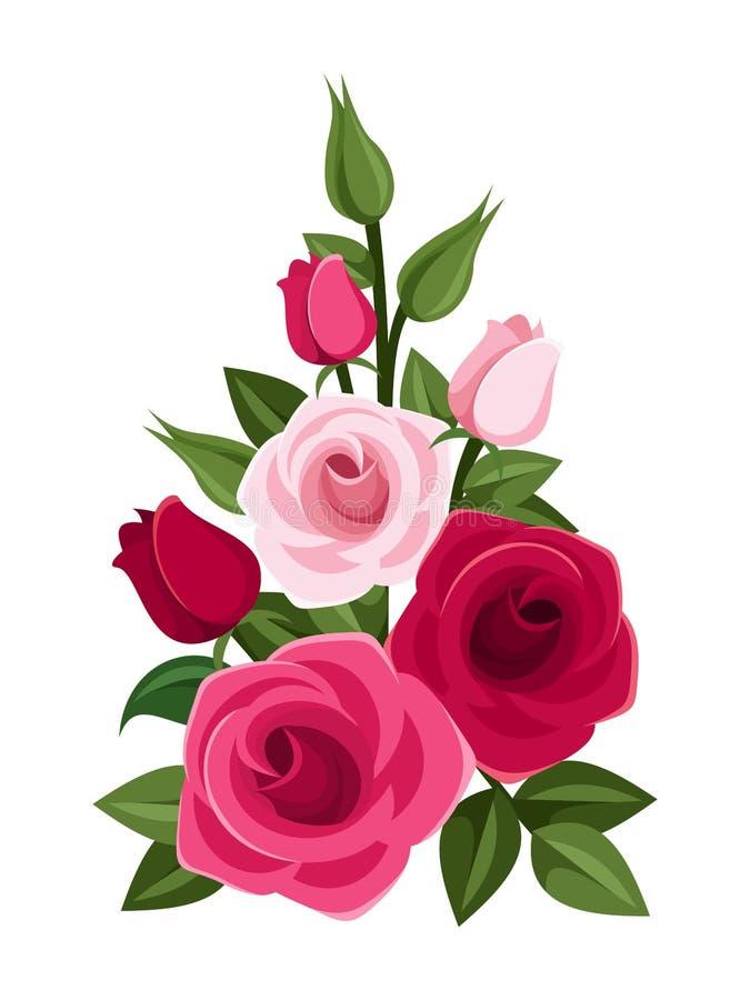 Κλάδος των κόκκινων και ρόδινων τριαντάφυλλων, των οφθαλμών και των φύλλων. απεικόνιση αποθεμάτων