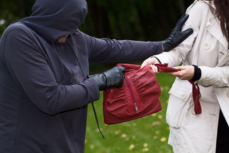 Κλέφτης στο πάρκο στοκ φωτογραφία με δικαίωμα ελεύθερης χρήσης