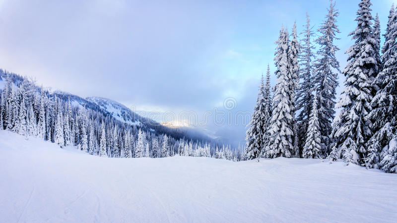 Κλίσεις σκι και ένα χειμερινό τοπίο με τα χιονισμένα δέντρα στους λόφους σκι κοντά στο χωριό των αιχμών ήλιων στοκ εικόνα