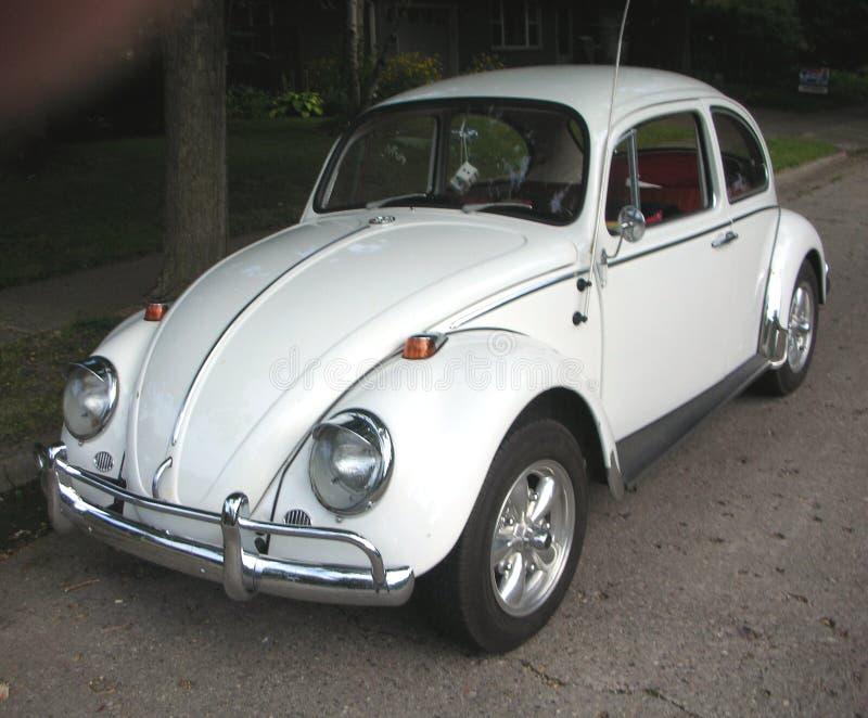 Κλασικός άσπρος κάνθαρος του Volkswagen στοκ φωτογραφίες με δικαίωμα ελεύθερης χρήσης