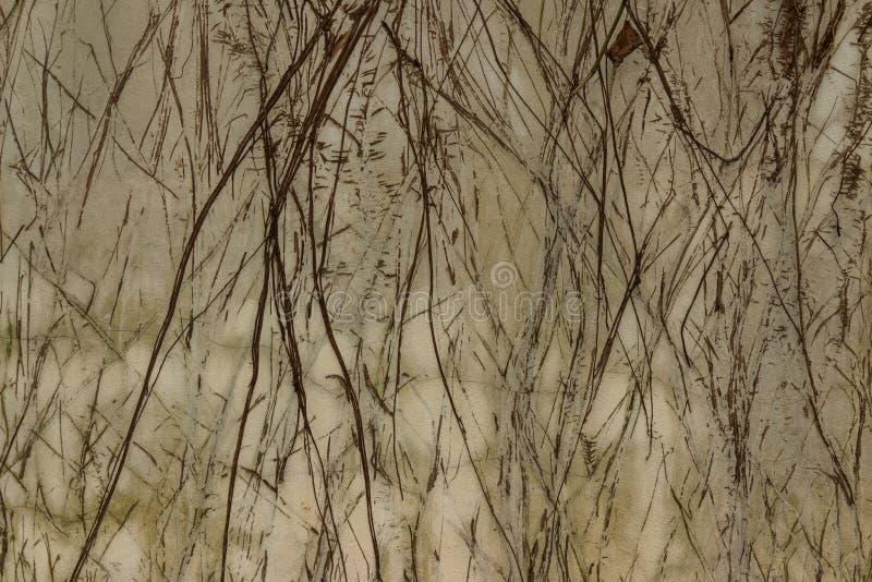 Κλασικός αναδρομικός τοίχος στοκ φωτογραφία με δικαίωμα ελεύθερης χρήσης