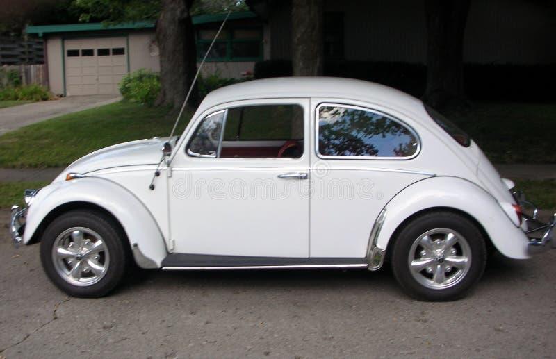 Κλασικός κάνθαρος του Volkswagen στοκ φωτογραφίες με δικαίωμα ελεύθερης χρήσης