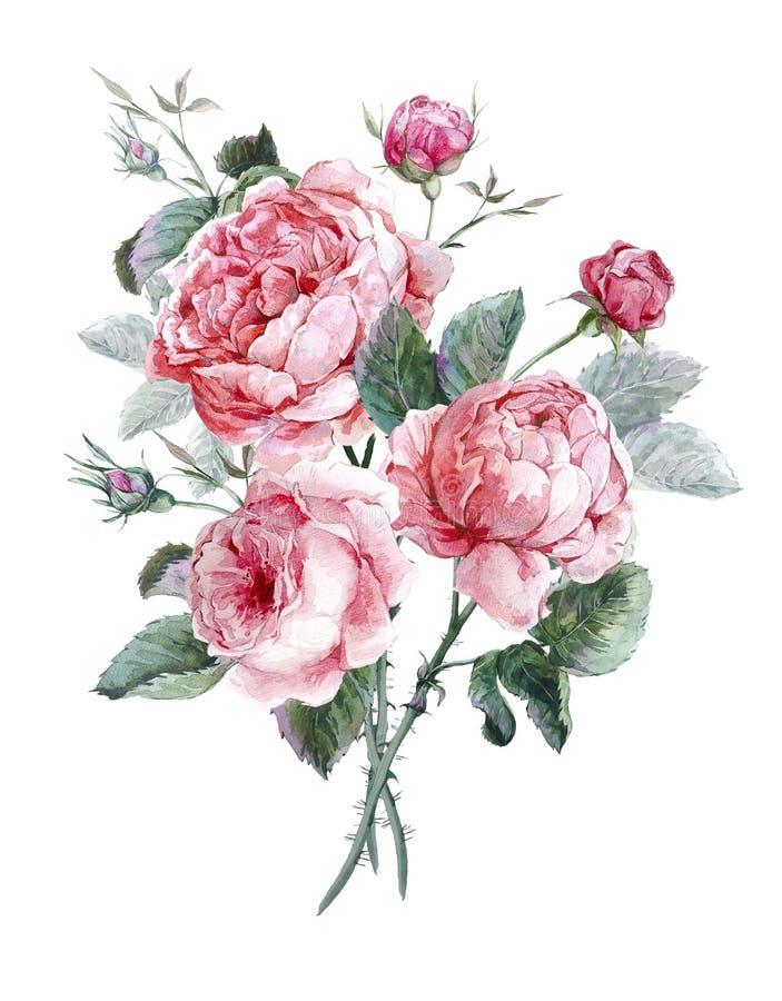 Κλασσική εκλεκτής ποιότητας floral ευχετήρια κάρτα, watercolor διανυσματική απεικόνιση