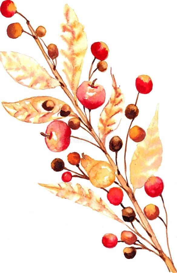 Κλαδίσκος Watercolor ελεύθερη απεικόνιση δικαιώματος