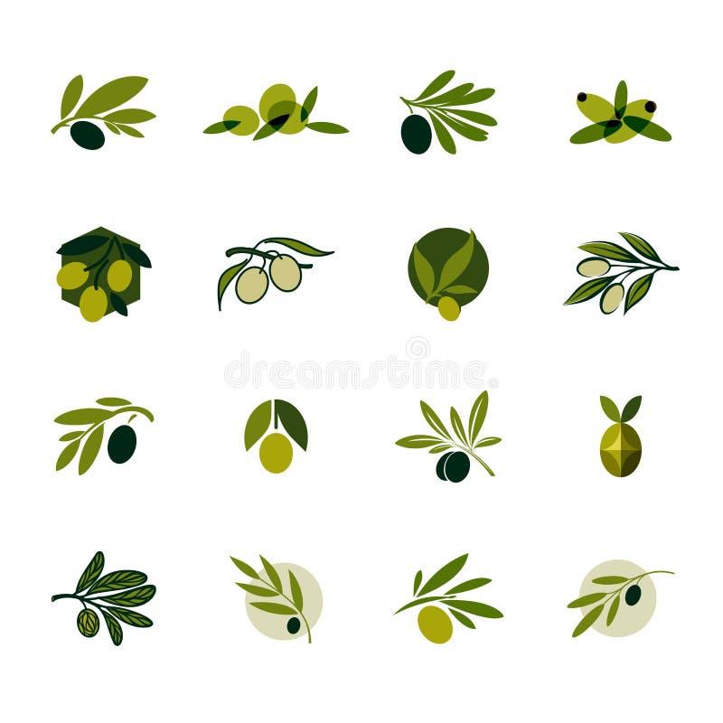 Κλαδί ελιάς Σύνολο διανυσματικών προτύπων και εικονιδίων σχεδίου λογότυπων διανυσματική απεικόνιση