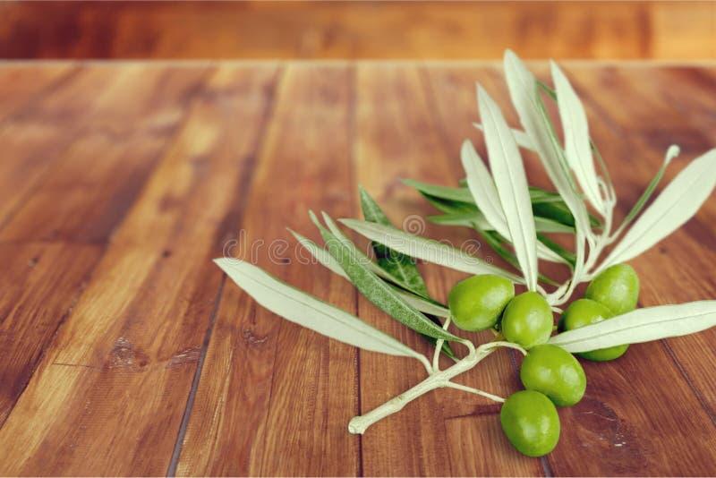 Κλαδί ελιάς στοκ εικόνα με δικαίωμα ελεύθερης χρήσης