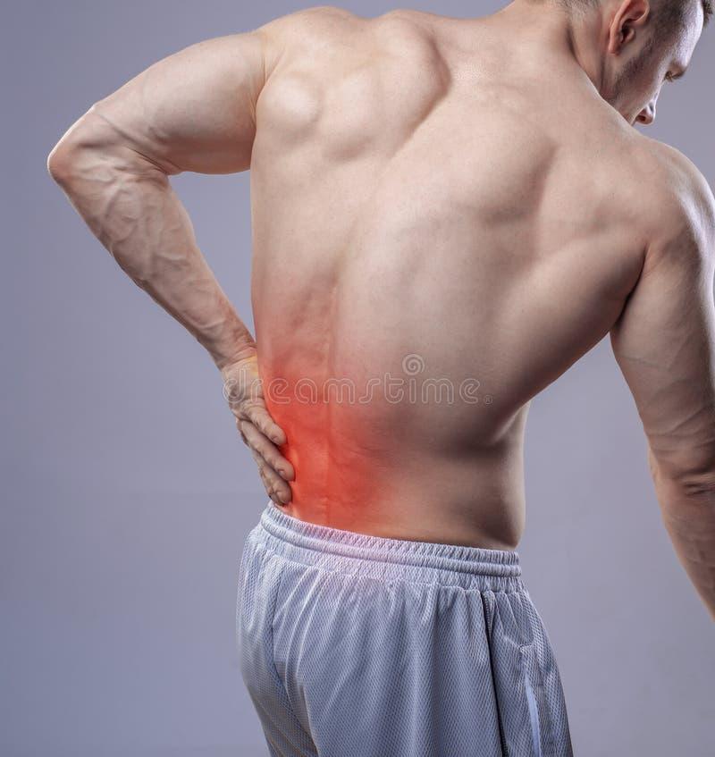 Κλείστε αυξημένος Το αθλητικό μυϊκό άτομο έχει τον πόνο στην πλάτη Κόκκινο σημείο του πόνου στην πλάτη στοκ φωτογραφίες με δικαίωμα ελεύθερης χρήσης