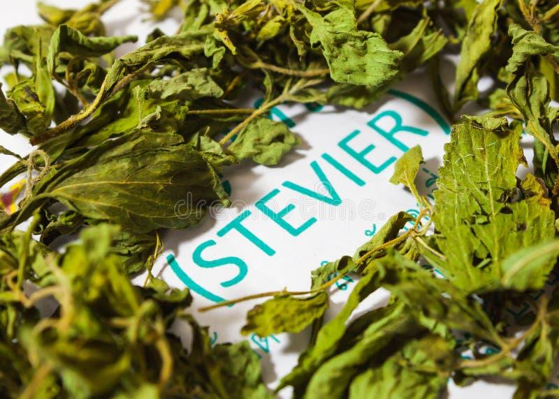 Κλείστε επάνω τα ξηρά φύλλα rebaudiana stevia (Bertoni) στοκ φωτογραφία με δικαίωμα ελεύθερης χρήσης