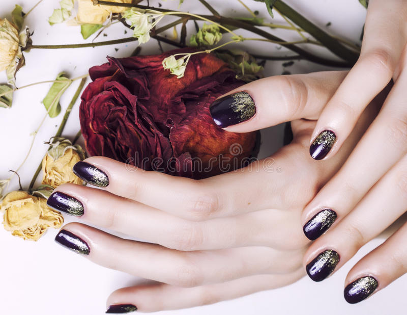 Κλείστε επάνω την εικόνα των καρφιών μανικιούρ με το ξηρό λουλούδι στοκ εικόνα με δικαίωμα ελεύθερης χρήσης