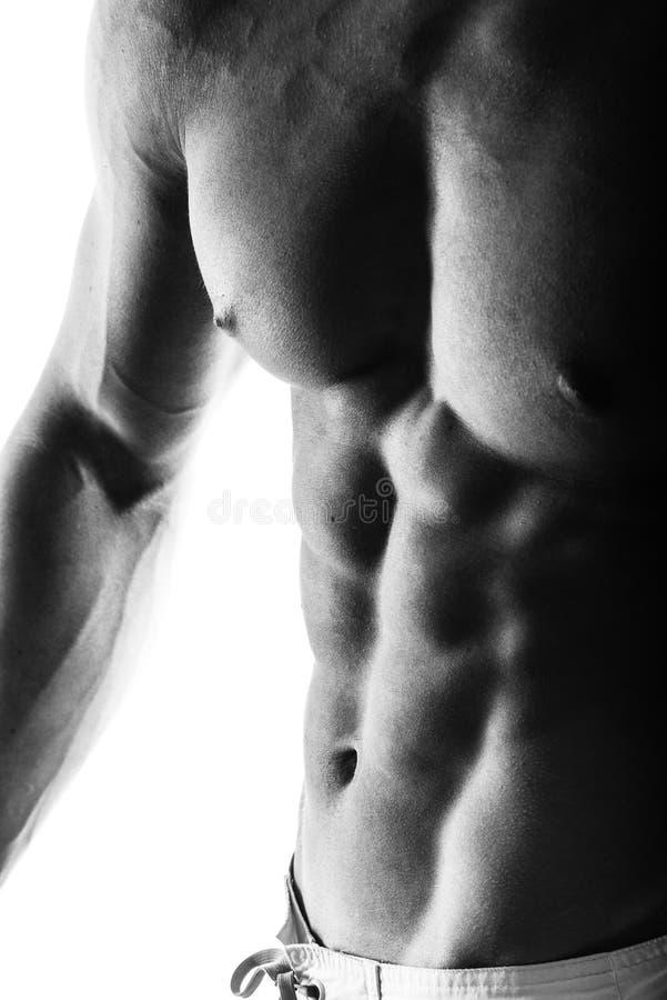 Κλείστε επάνω του μυϊκού τύπου bodybuilder που κάνει τις ασκήσεις με τα βάρη που απομονώνονται στο λευκό μονοχρωματικός στοκ φωτογραφία