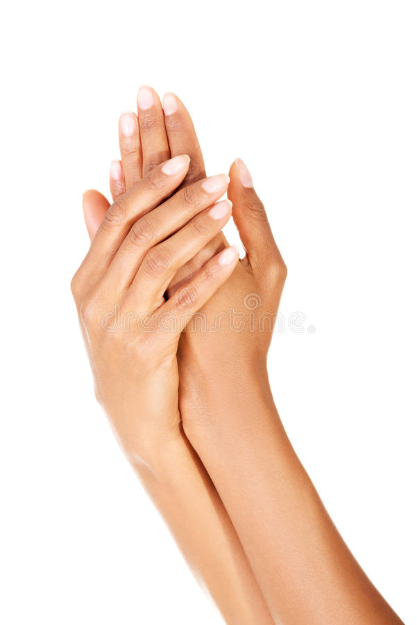 Κλείστε επάνω το βλαστό των όμορφων θηλυκών χεριών στοκ εικόνα με δικαίωμα ελεύθερης χρήσης