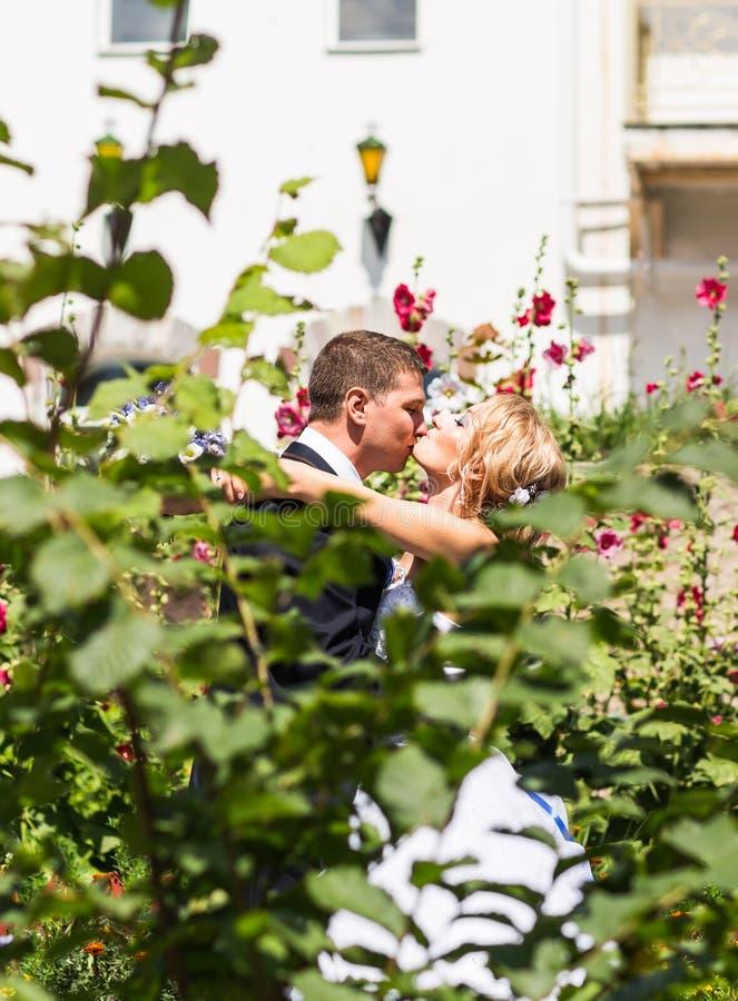 Κλείστε επάνω το πορτρέτο του φιλήματος του γαμήλιου ζεύγους στοκ φωτογραφίες με δικαίωμα ελεύθερης χρήσης