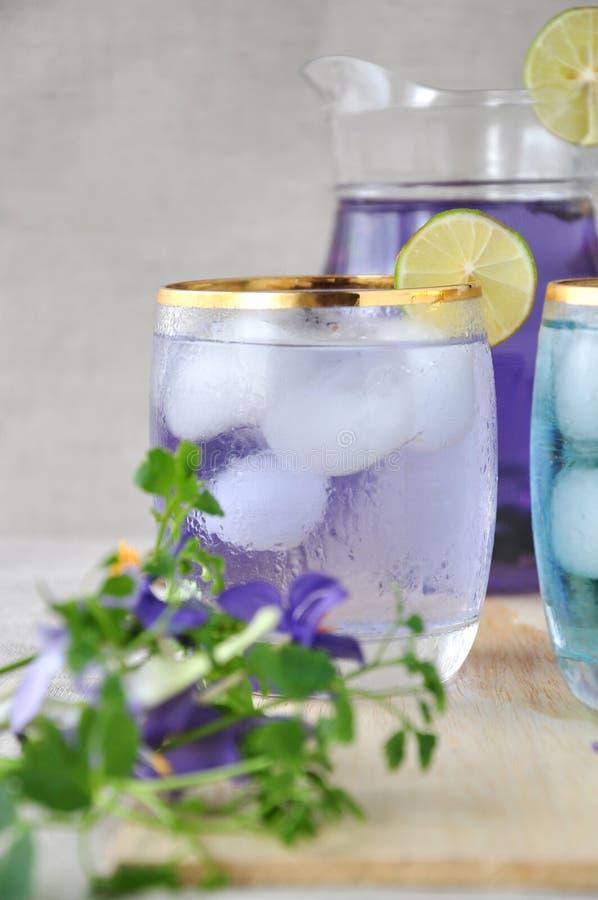 Κλείστε επάνω το χυμό μπιζελιών πεταλούδων με τον ασβέστη στοκ εικόνα με δικαίωμα ελεύθερης χρήσης