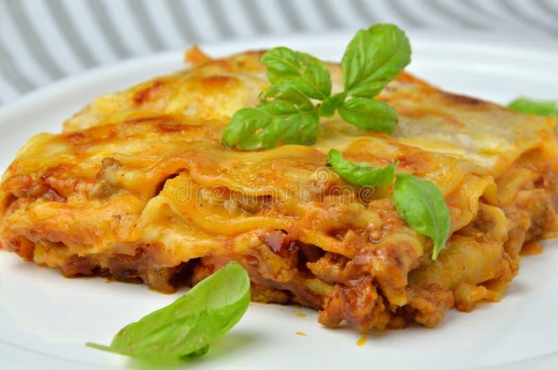 Κλείστε επάνω Lasagne με το βασιλικό στοκ εικόνες με δικαίωμα ελεύθερης χρήσης