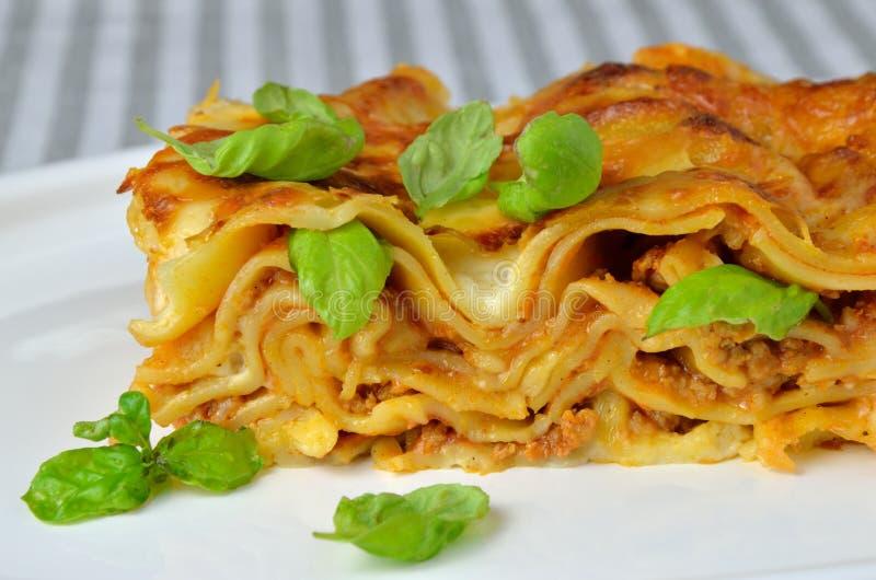 Κλείστε επάνω Lasagne με το βασιλικό στοκ εικόνες