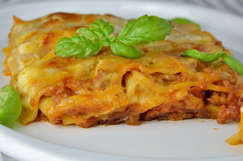 Κλείστε επάνω Lasagne στοκ φωτογραφία