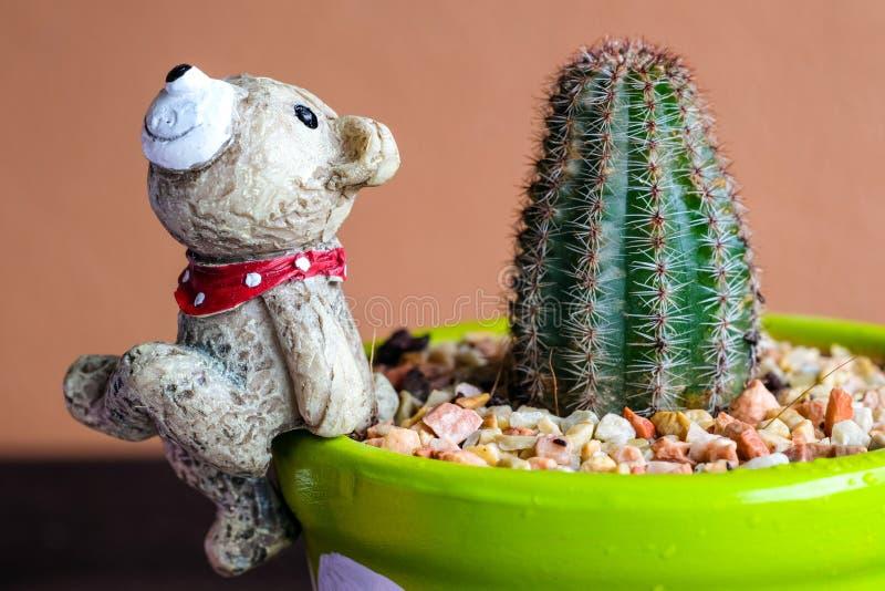 Κλειστή επάνω εικόνα της κεραμικής αρκούδας στο ζωηρόχρωμο δοχείο cacus με το Οράν στοκ φωτογραφία με δικαίωμα ελεύθερης χρήσης