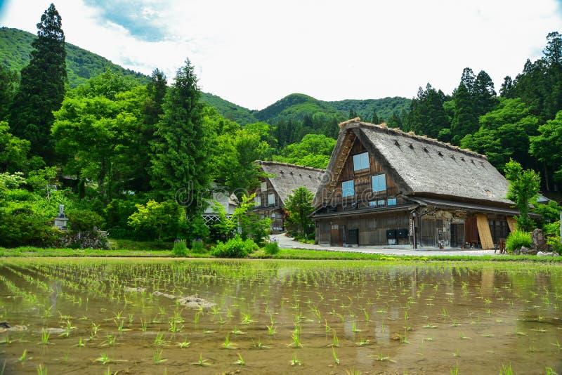 Κληρονομιά Shirakawa στοκ εικόνα με δικαίωμα ελεύθερης χρήσης