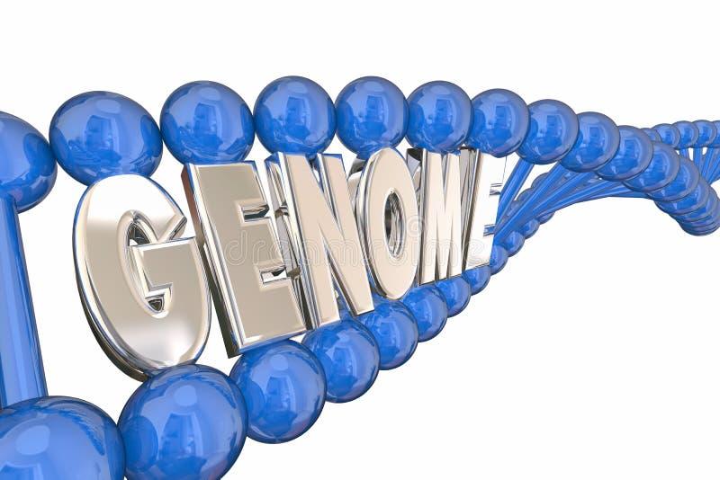 Κληρονομικότητα γενετικής σκελών DNA του Word γονιδιώματος απεικόνιση αποθεμάτων