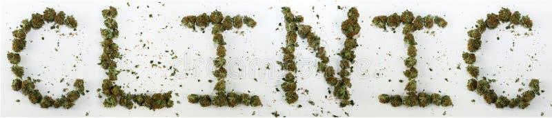 Κλινική που συλλαβίζουν με τη μαριχουάνα στοκ φωτογραφία με δικαίωμα ελεύθερης χρήσης