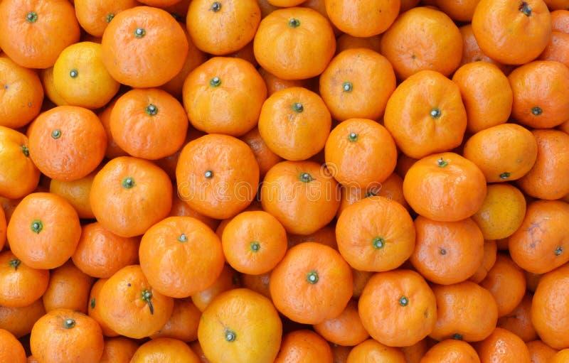 Κλουβί ώριμα tangerines στοκ εικόνα