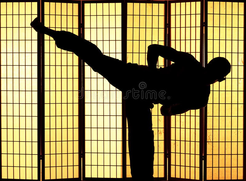 Λάκτισμα Kung fu στοκ εικόνα με δικαίωμα ελεύθερης χρήσης