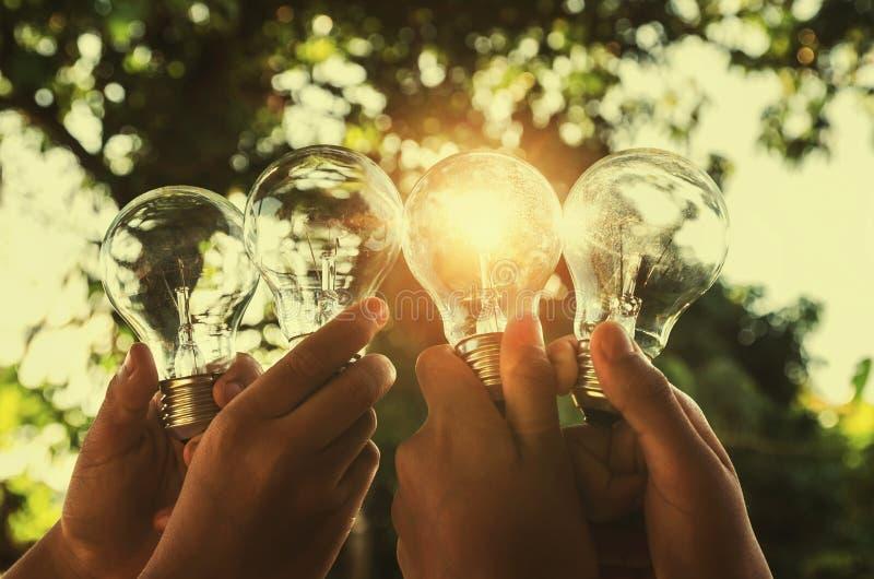 λάμπα φωτός εκμετάλλευσης ομάδας χεριών έννοιας ηλιακής ενέργειας στοκ εικόνες