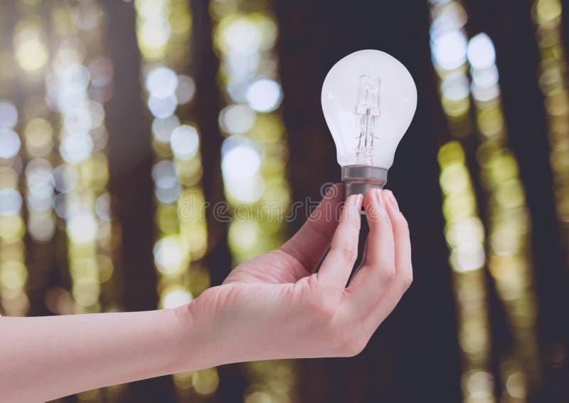 Λάμπα φωτός εκμετάλλευσης χεριών στο πράσινο δάσος φύσης στοκ φωτογραφία με δικαίωμα ελεύθερης χρήσης