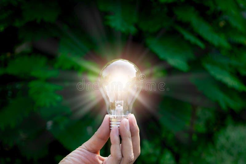 Λάμπα φωτός εκμετάλλευσης χεριών στο πράσινο υπόβαθρο φύσης κήπων στοκ εικόνα με δικαίωμα ελεύθερης χρήσης