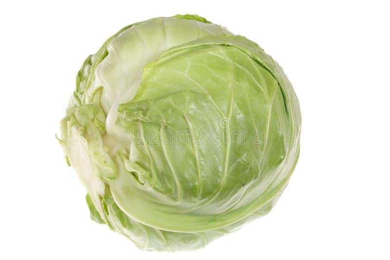 λάχανο πράσινο στοκ φωτογραφία με δικαίωμα ελεύθερης χρήσης