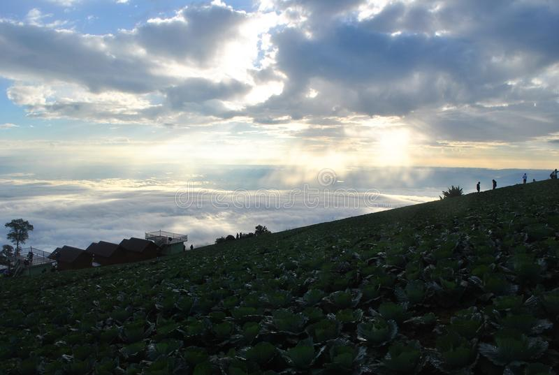 Λάχανο στη στρατοπέδευση βουνών και την άποψη ουρανού άποψης σύννεφων σχετικά με τη γη στοκ φωτογραφία με δικαίωμα ελεύθερης χρήσης