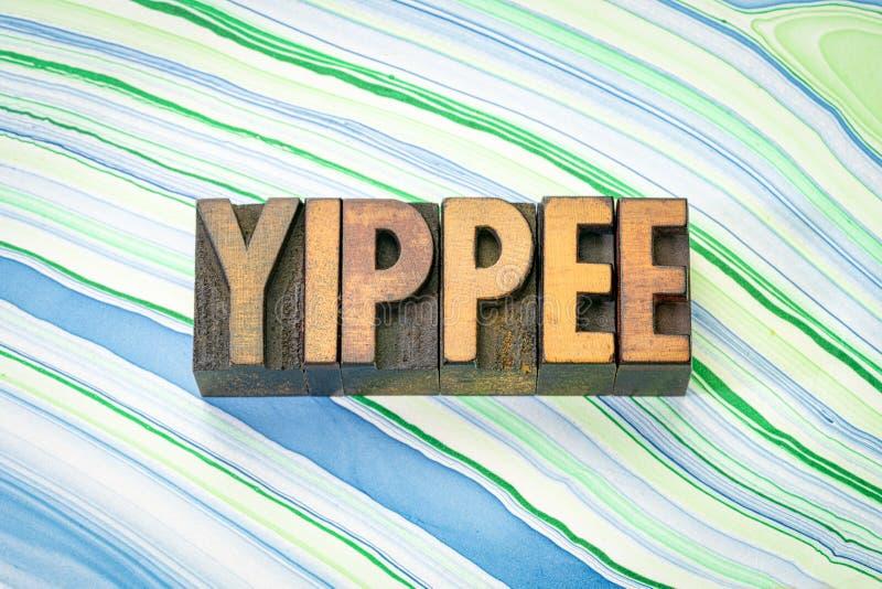 Λέξη Yippee στον ξύλινο τύπο στοκ φωτογραφία