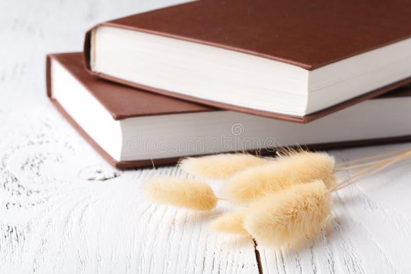 Λίγα βιβλία και ρομαντικό ξηρό χορτάρι στον πίνακα στοκ εικόνες