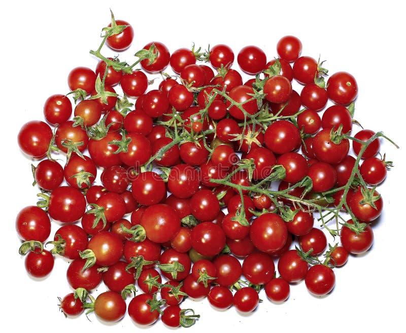 Λίγες ντομάτες κερασιών που απομονώνονται κόκκινες στοκ εικόνες με δικαίωμα ελεύθερης χρήσης