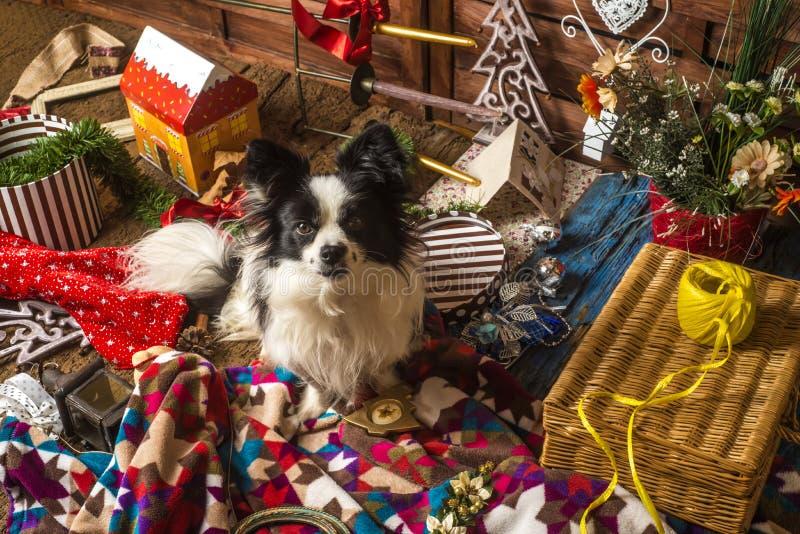 Λίγη κάρτα Χριστουγέννων σκυλιών στοκ φωτογραφία