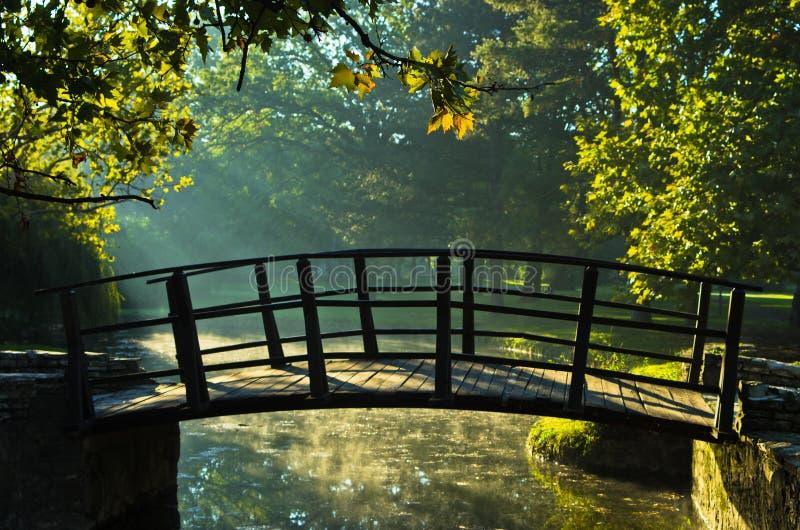 Λίγη ξύλινη γέφυρα sunrays πρώτα στο πρωί στο πάρκο Topcider, Βελιγράδι στοκ φωτογραφίες