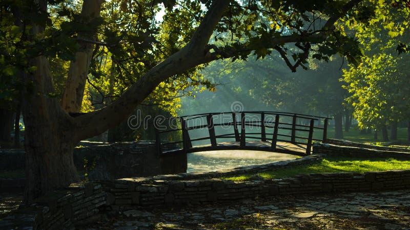 Λίγη ξύλινη γέφυρα sunrays πρώτα στο πρωί στο πάρκο Topcider, Βελιγράδι στοκ εικόνες